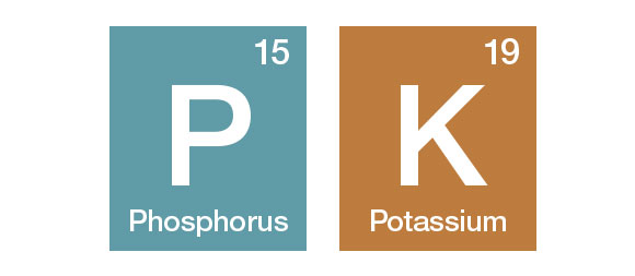 Phosphate and Potash icons